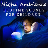 Night Ambience Bedtime Sounds For Children by Various Artists