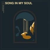 Song In My Soul von Arise Music