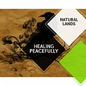 Healing Peacefully - Natural Lands by Sleepy Times