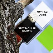 Spectacular Nature - Natural Lands by Sleepy Times