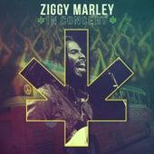 In Concert by Ziggy Marley