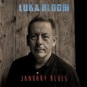 January Blues de Luka Bloom