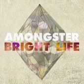 Bright Life (Single Edit) de Amongster