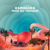 Psych Aux Tropiques de Kamggarn