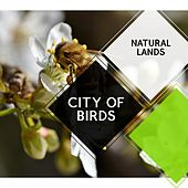 City of Birds - Natural Lands by Sleepy Times