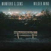 Wilder Mind de Mumford & Sons