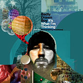 It's What I'm Thinking Part One - Photographing Snowflakes de Badly Drawn Boy