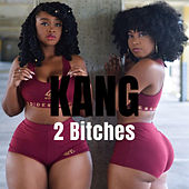 2 Bitches by Loudpak KANG