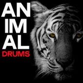 Animal Drums (Sensation House Music 2020) de Various Artists