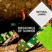 Birdsongs of Summer - Natural Lands by Sleepy Times