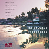 The Gowanus Recordings de Daniel Carter