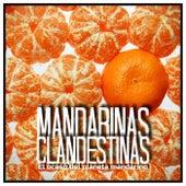 el ocaso del planeta mandarino (Instrumental Version) de Mandarinas Clandestinas