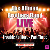 Trouble No More - Part Three (Live) by The Allman Brothers Band