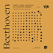 Beethoven: Thirty-Three Variations on a Waltz by Diabelli, Op. 120: Variation 14. Grave e maestoso by Julius Katchen