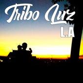 Não Estamos Sozinhos de TriboLuz L.A