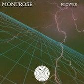 Flower de Montrose