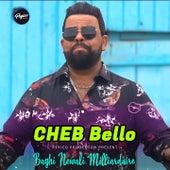 Baghi Newali Milliardaire by Cheb Bello