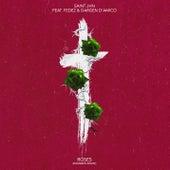 Roses (Imanbek Remix) di SAINt JHN