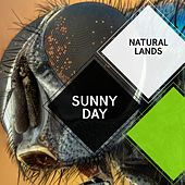 Sunny Day - Natural Lands by Sleepy Times