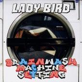 BRAINWASH MACHINE SETTING EP van Ladybird