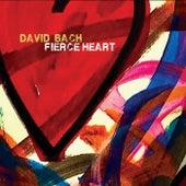 Fierce Heart by David Bach