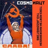 Cosmonaut de Tore Morten Andreassen