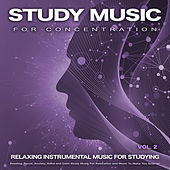 Study Music For Concentration: Relaxing Instrumental Music For Studying, Reading, Focus, Anxiety, Adhd and Calm Study Music For Relaxation and Music To Make You Smarter, Vol. 2 di Studying Music