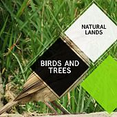 Birds and Trees - Natural Lands by Sleepy Times