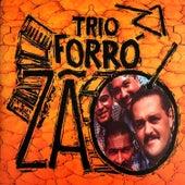 Ao Vivo von Trio Forrozão
