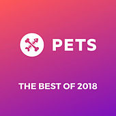 Pets Recordings Best of 2018 by Various Artists