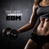 Pure Energy Workout EDM de Various Artists