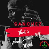 That's What Love Is All About de Sanchez