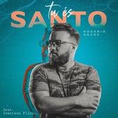 Tu És Santo by Rogério Sousa
