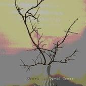Grown by David Cross