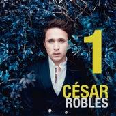 1 de César Robles