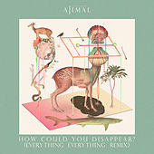 How Could You Disappear? (Everything Everything Remix) van Ajimal