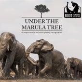 Under the Marula Tree de Root