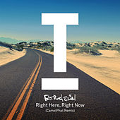 Right Here Right Now (CamelPhat Remix) von Fatboy Slim