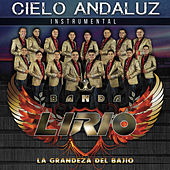 Cielo Andaluz de Banda Lirio