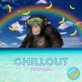 Chillout Tropical von Banana Bar