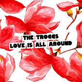 Love Is All Around (Summer of Love Version) de The Troggs