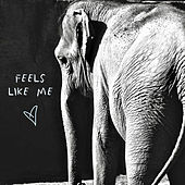 Feels Like Me by Gin Wigmore