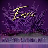 Never Seen Anything Like It by Emric