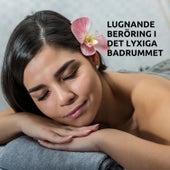 Lugnande beröring i det lyxiga badrummet von Blandade Artister