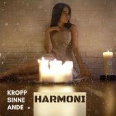 Kropp, Sinne, Ande harmoni von Blandade Artister