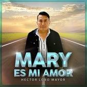 Mary Es Mi Amor de Héctor Lobo Mayor