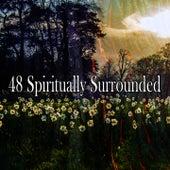 48 Spiritually Surrounded de Yoga Tribe