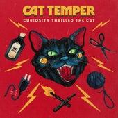 Curiosity Thrilled the Cat by Cat Temper