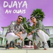 Ah ouais de Djaya