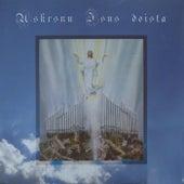 Uskrsnu Isus Doista de Katedralni Zbor Mostar